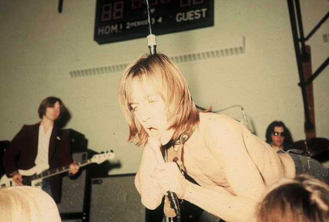 Iggy and the Stooges (3)