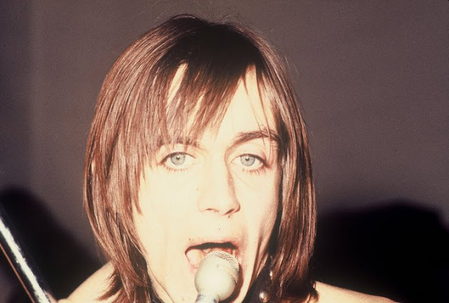 Iggy and the Stooges (5)