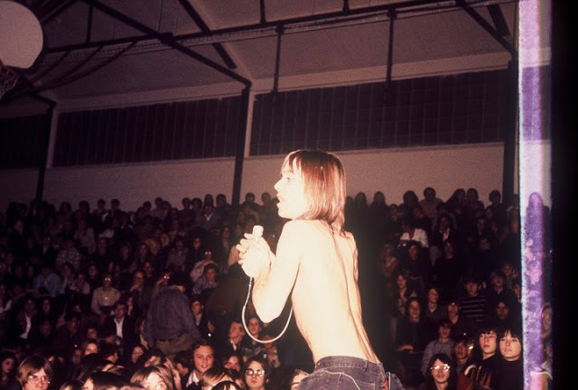 Iggy and the Stooges (9)