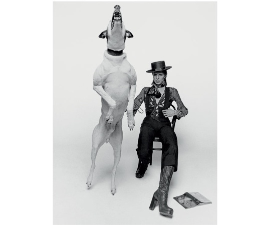 Bowie and Dog