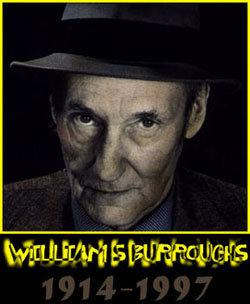 Bull Willi