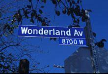 wonderland plate